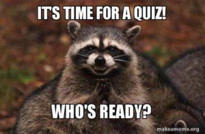 Quiz Racoon